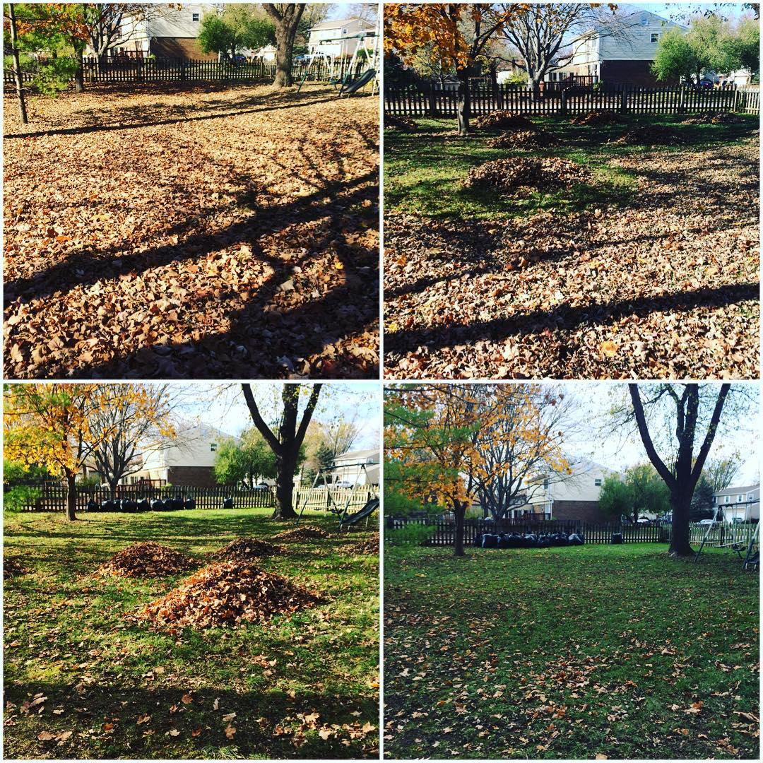 Day 6: went for a short run and did some raking in the backyard. @marciamarciamarcia333 and I did some damage! Only a little bit left for tomorrow. #workitout100 #fitness #fallbeauty #rakingleaves #somanyleaves #poiselsontheprowl