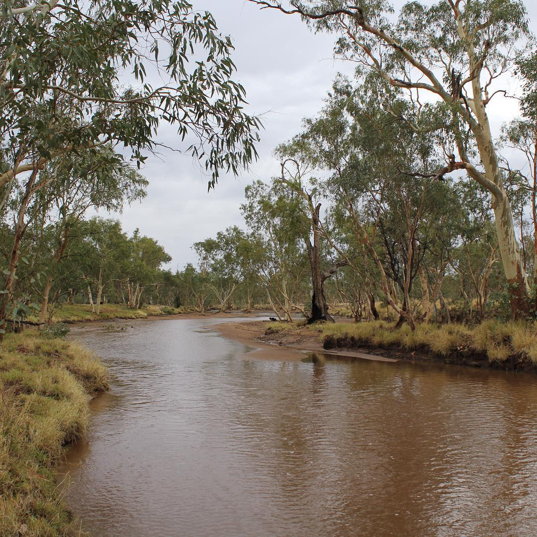 The Mighty Todd River getting a bit of flow before Christmas... #toddriver #alicesprings #ausoutbacknt #ntaustralia