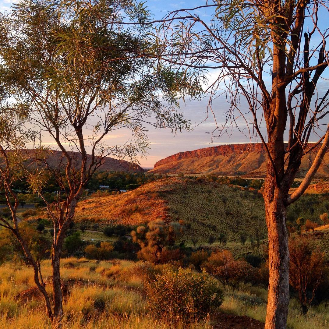 #ilovealicesprings morning walks where you feel like you are miles away from anywhere...@alicespringstowncouncil @ausoutbacknt