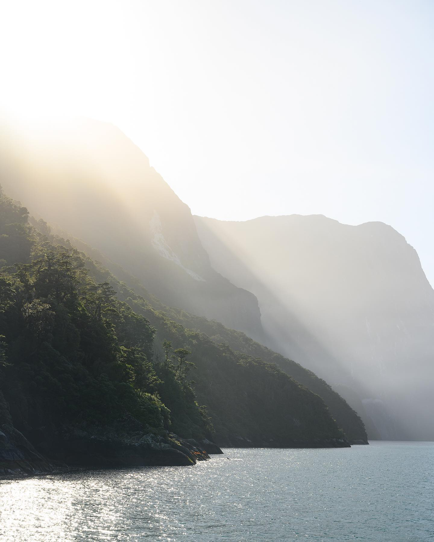 Sunrise over Milford Sound 🌄  This is not the typical weather for this part of New Zealand, but the sunny views were still breathtaking. Morning fog lifting up, sun rays though the mountain peaks, dolphins and seals swimming by - nothing short of perfection 👌 . . . . . #lovefiordland #milfordsound #milfordsounds #milfordsoundcruise #milfordsoundnz #tasmansea #fiordlandnationalpark #fiordlandnz #fiordlands #fiord #fiords #dosomethingnewnz #airnzshareme #fiordlandbeyondbelief #destinationnz #ig_newzealand #nouvellezelande #nikonnz #nzsummer #onmountainnz #raw_australia_nz #raw_nz #realrawnz #foggymountains #sunshadow #nznature #nzmustseen #nzsunrise #sunrisemountain