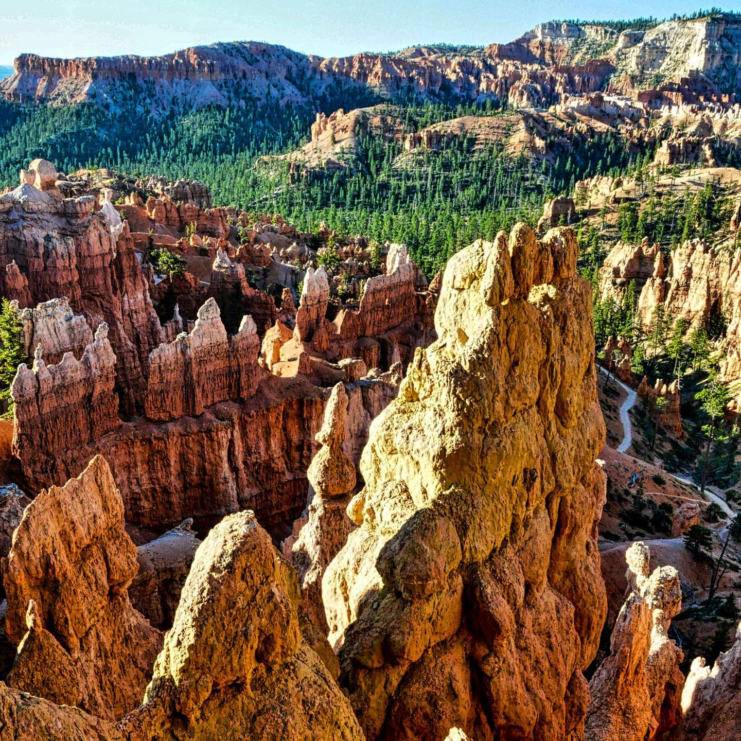 Bryce Canyon, Utah A masterpiece of nature. #usa #usatravel #usatravels #utah #brycecanyonnationalpark #brycecanyon #nature #naturelovers #naturephotography #naturfotografie #nature_perfection #masterpiece #beautifulnature #beautifulplaces #beautifuldestinations #utahunique #uniqueplaces #utahlove #utahgram #travelphotography #travelpics #naturephoto #reisefotografie #reiseblog #travelblog #travelblogger #instatravel #instapic #reiseblogger #naturepics