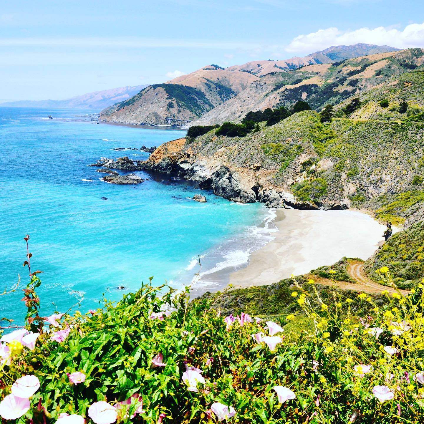 California Dreamin' - Pacific Coast Highway #usatravels #usa🇺🇸 #california #californiadreaming #californialove #pacificcoast #pacificcoasthighway #roadtrip #roadtripusa🇺🇸 #scenicdrives #scenicviews #ontheroad #stunningview #sobeautiful #naturephotography #naturelovers #breathtaking #breathtakingviews #mothernature #landscapephotography #landscape_lovers #beach