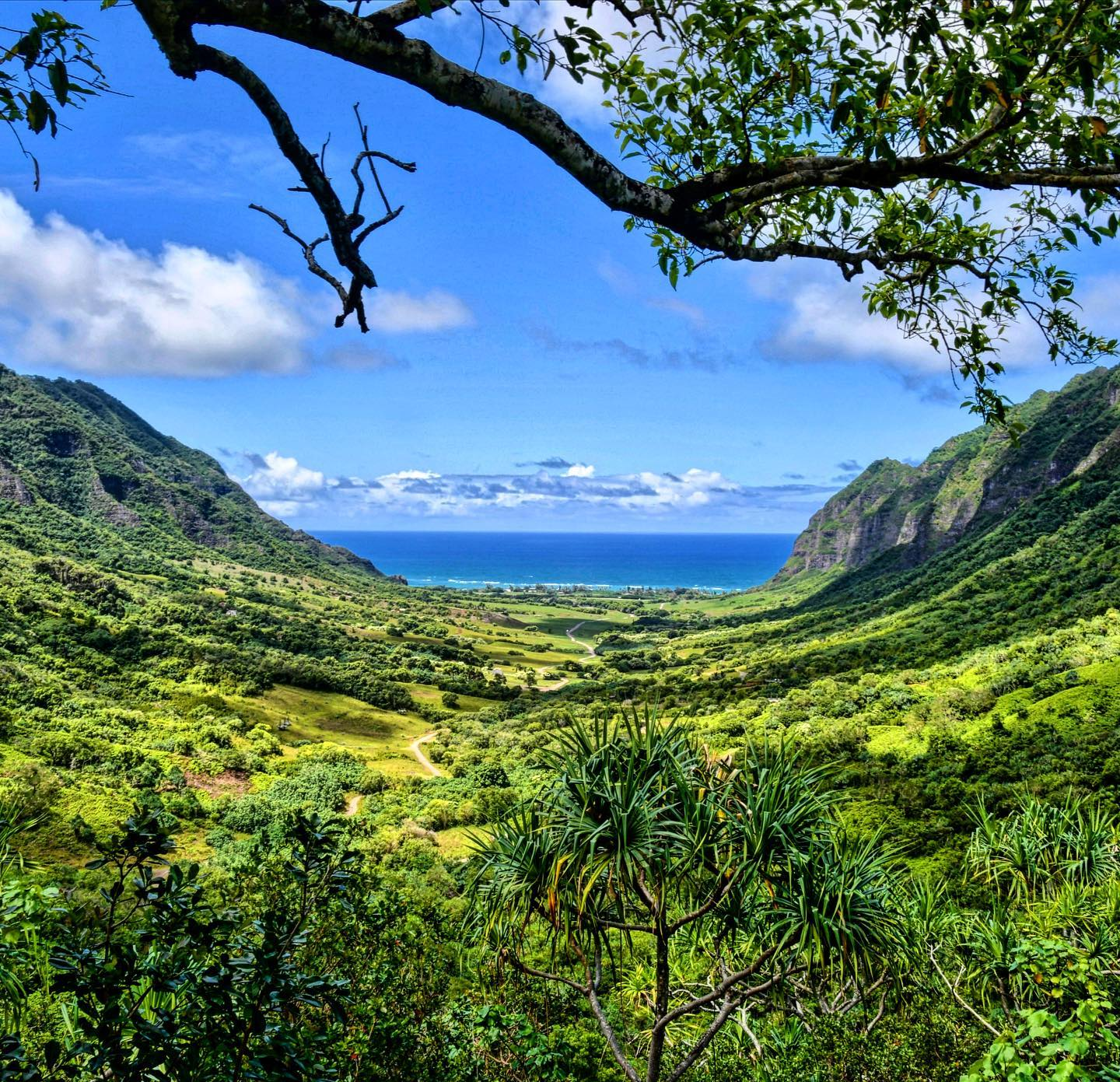 Ka'a'awa Valley, Oahu, Hawaii This view, just wowing😍😍😍  #usa #usatravel #usatravels #hawaiitrip #hawaiitravel #hawaiiviews #hawaiilove #hawaiivibes #hawaiivacation #oahu #oahuhawaii #nature #traveltherenext #naturephotography #naturelovers #naturfotografie #travelphotography #travelpics #kaaawavalley #america #view #greenandblue #travelcouples #travelstoke #usaliebe #nature_perfection #beautifuldestinations #beautifulnature #traveltheglobe #instatravel