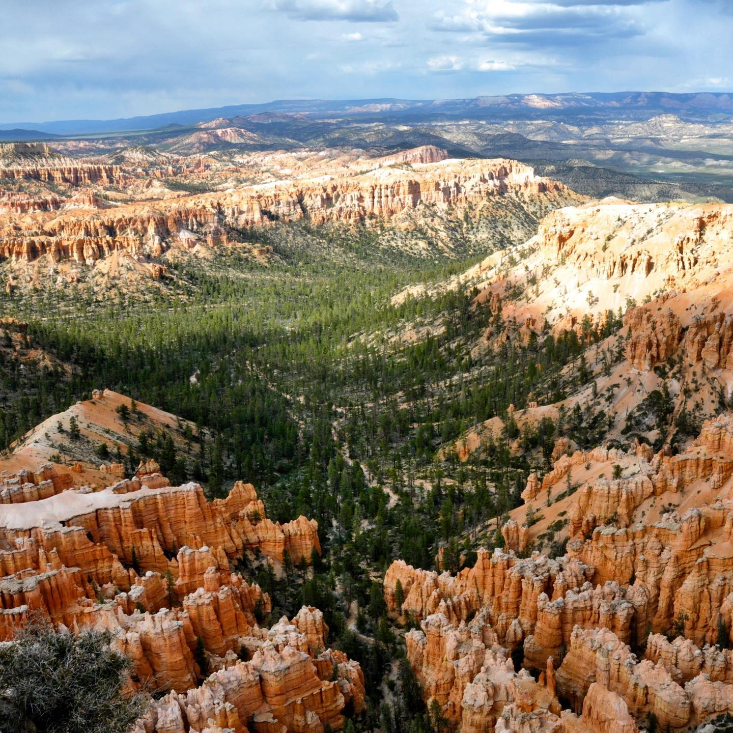 Bryce Canyon NP, Utah If you visit Bryce Canyon NP, do the Navajo Loop Trail.  Awesome hike! Beautiful scenery! Highly recommend! Way down the canyon was easy, the way up not. We did the hike in June and it was really hot. #traveltheusa #traveltheus #travelgram #traveladdict #travelgram #travelblogger #utah #utahgram #utahphotographer #beautifulutah #roadtripusa #brycecanyonnationalpark #brycecanyon #hikingadventures #canyon #naturephotography #navajolooptrail #landscapelovers #scenery #hoodoos #southwest