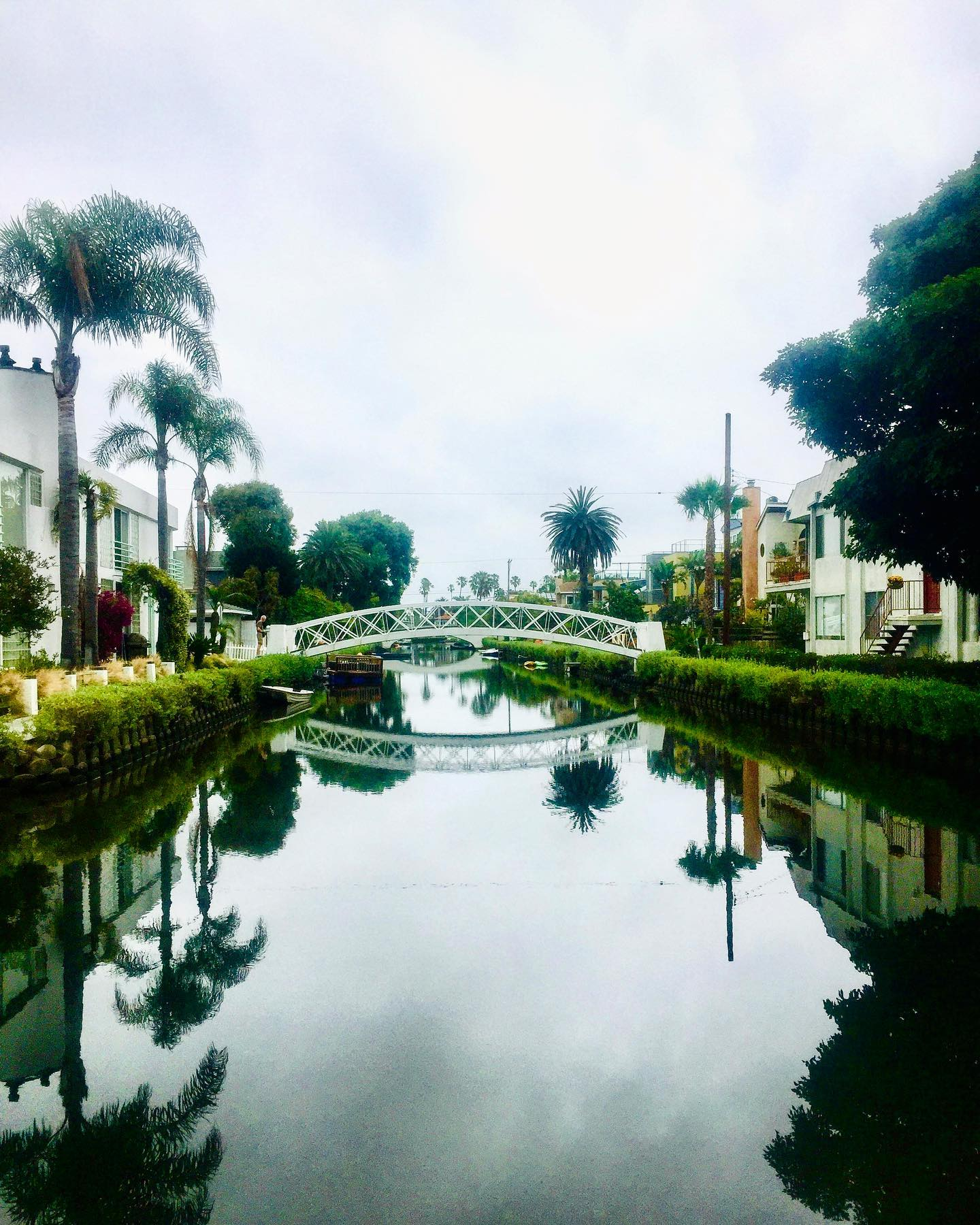 Venice Canal Walkway, LA, California  Beautiful place to take a stroll if you're in the area, only a few minutes away from Venice Beach. A hidden gem in busy LA. #usatravels #unitedstates #unitedstateofamerica #california #socal #la #cityphotography #citylife #ladreaming #venicebeach #venicecalifornia #venicecanals #travelphotography #travelgram #travelblogger #losangeles #losangelesphotography #morningstroll #instatraveler #wanderlust #traveladdict