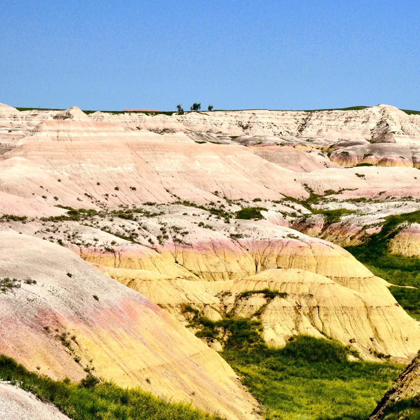 Badlands NP, South Dakota Seemingly out of nowhere colorful curved formations reveal as far as you can see. We were really impressed by the beauty of the park. #usa #us #unitedstates #unitedstatesofamerica #roadtrip #roadtripusa #travelusa #traveltheus #travelphotography #travelgram #travellover #traveller #reisefotografie #reiselust #usareise #southdakota #badlands #badlandsnationalpark #nationalparkusa #nature #naturephotography #nature_perfection #socolourful #uniqueplaces #travelblog #travelblogger #reiseblogusa #reiseblogger #picofday #naturepics