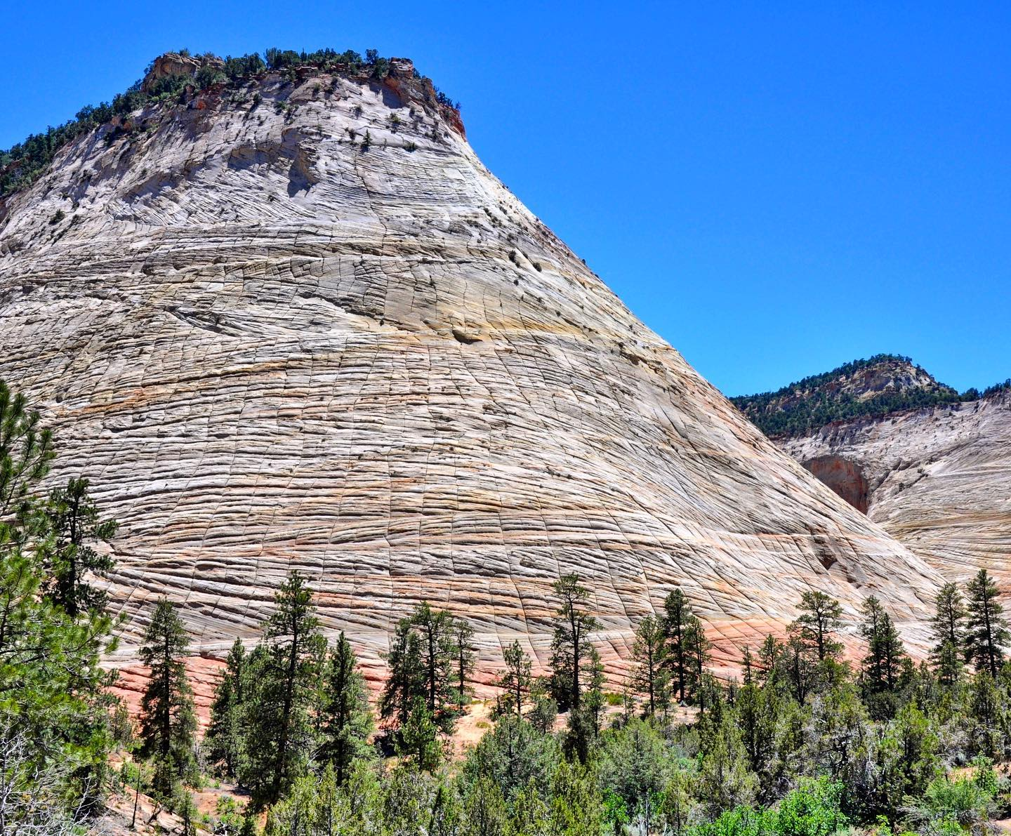 Checkerboard Mesa, Zion NP, Utah Checkerboard Mesa is located at the east entrance to Zion National Park and easily accessible via Utah State Route 9.
