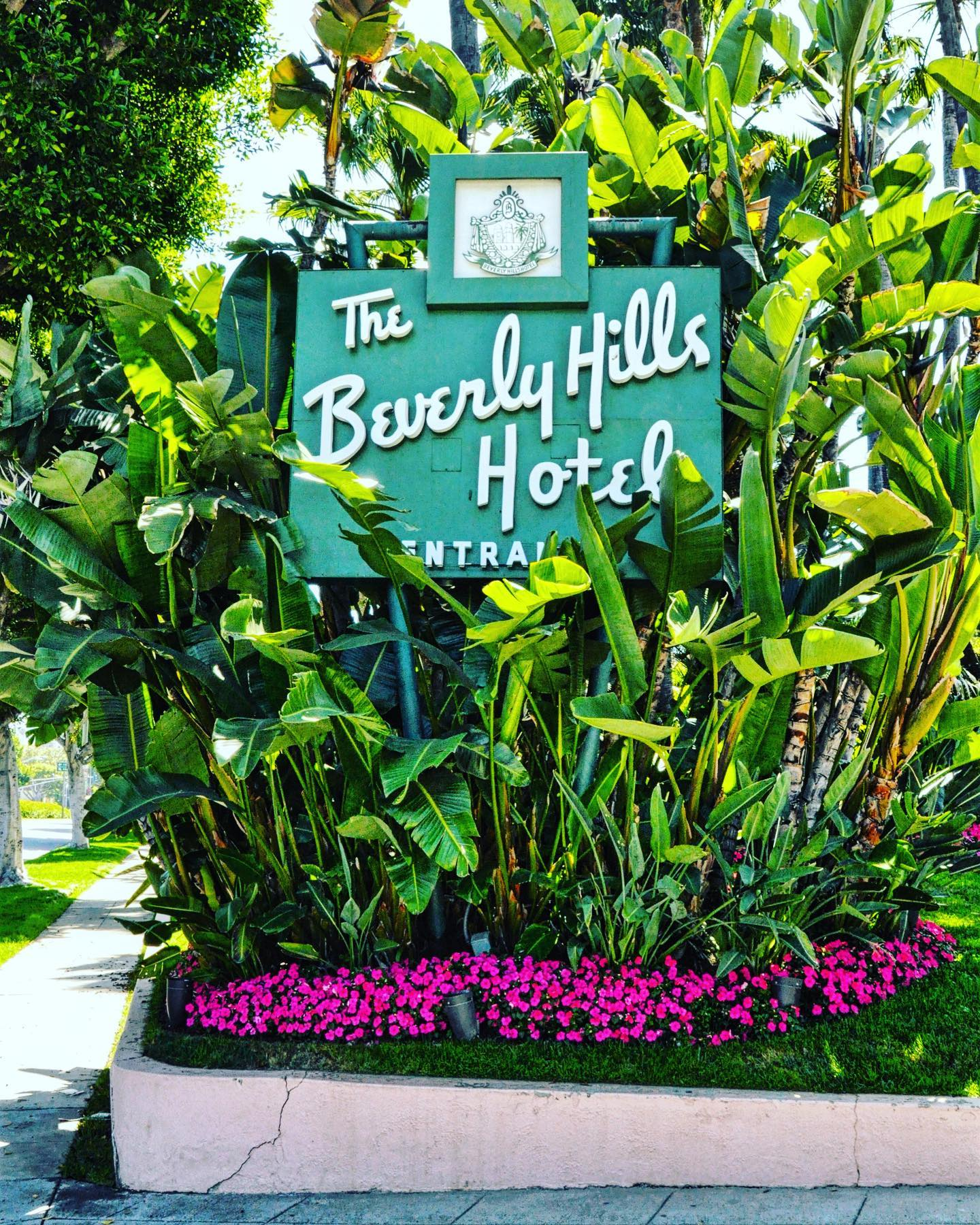 The Beverly Hills Hotel, LA, California  By far not the coolest hotel in LA, but certainly one of the most prestigious places. #usa #usatravel #usatraveler #california #la #losangeles #losangelesworld #cityofangeles #citytrip #cityphotography #citylove #hotel #worldhotels #beverlyhills #lalife #beverlyhillshotel #travelgram #travelblog #travelblogger #reiseblog #reiseblogger