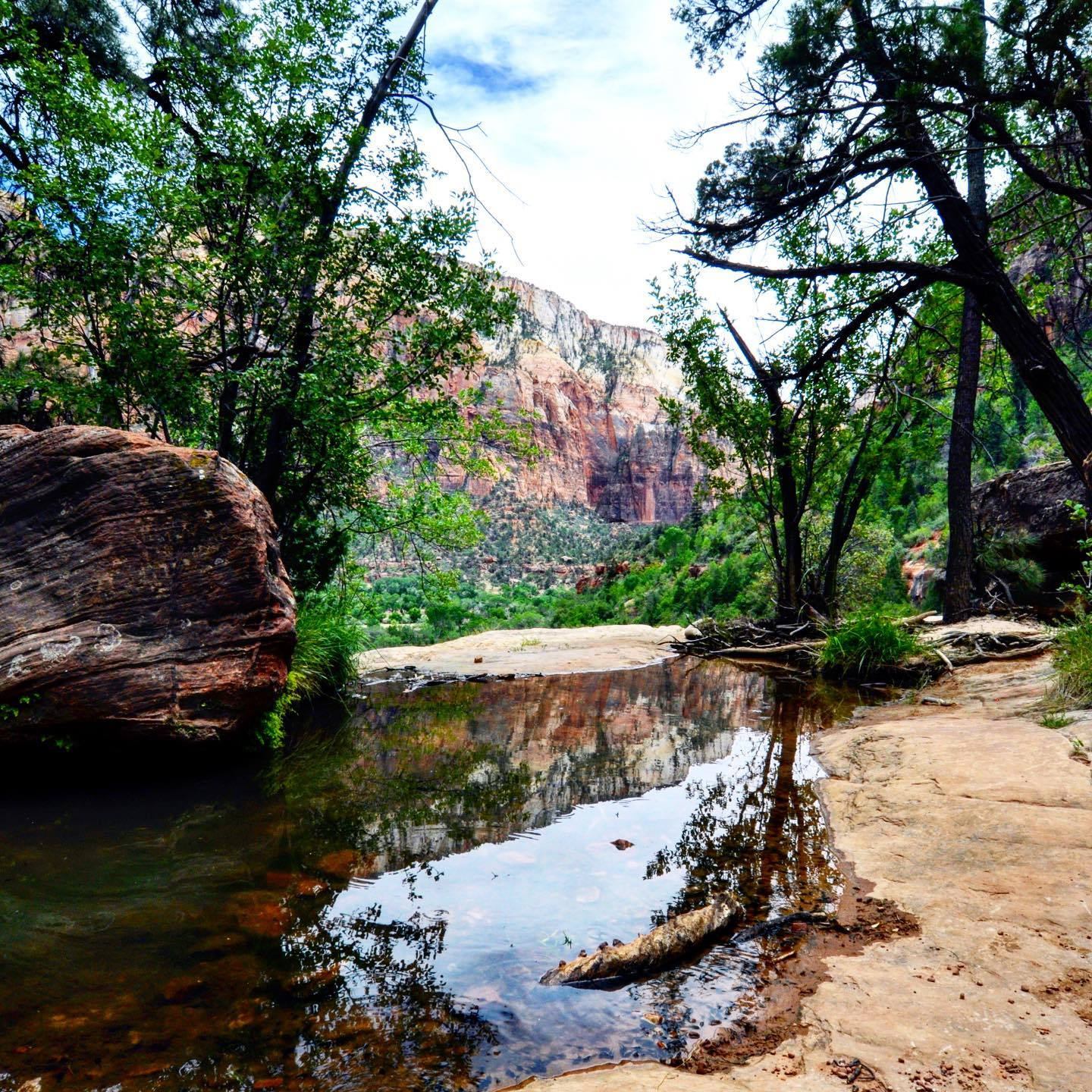 Emerald Pools, Zion NP, Utah Upper Emerald Pools Hiking Trail 🥾 #usa #usatravel #usatraveler #usanationalparks #zionnationalpark #roadtrip #roadtripusa #travelphotography #travelgram #emeraldpool #hikingzion #hikingadventures #nature #naturephotography #naturelovers #natur #naturfotografie #reisefotografie #usareise #travelblog #travelblogger #reiseblog #reiseblogger #reiselust #amerikareizen #reisenmachtglücklich